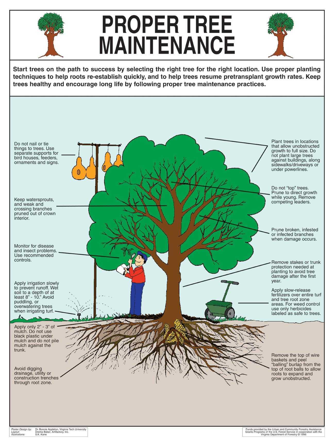 Telah menemukan bahwa terdapat listrik yang cukup di dalam pohon